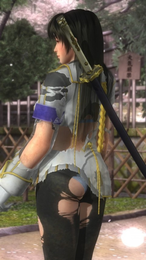 DEAD OR ALIVE 5 Last Round_20150421045302